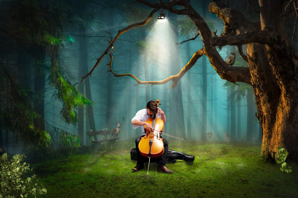 Cello Story: Cellist playing ian a forest under a spotlight