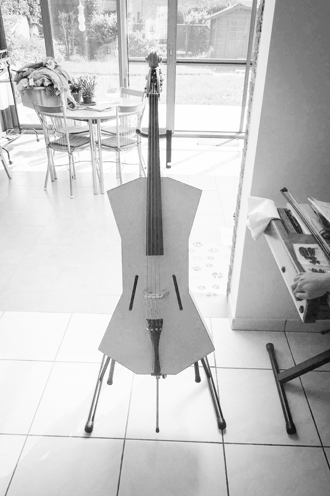 XPS Cello by Anika Beauquesne